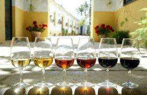 18 copas-vino-de-jerez
