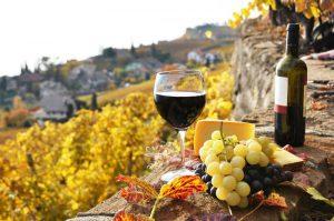 28 vinos Malaga